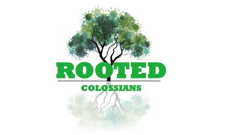 rooted graphic wide